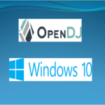 OpenDJ-Installation-Windows