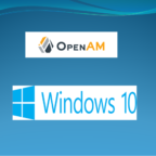 ForgeRock OpenAM Custom Configuration Installation on Windows