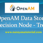 How to Configure OpenAM Data Store Decision Node Tree